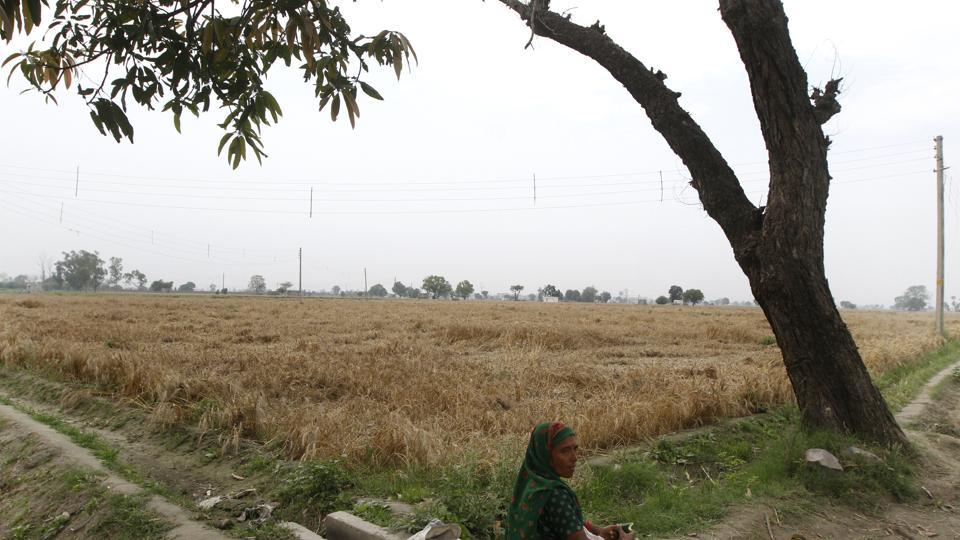 While the policy implementation will change the character of the rural belts, revenue villages on the margins of the Delhi border across the city are likely to remain out of the policy even in the future.