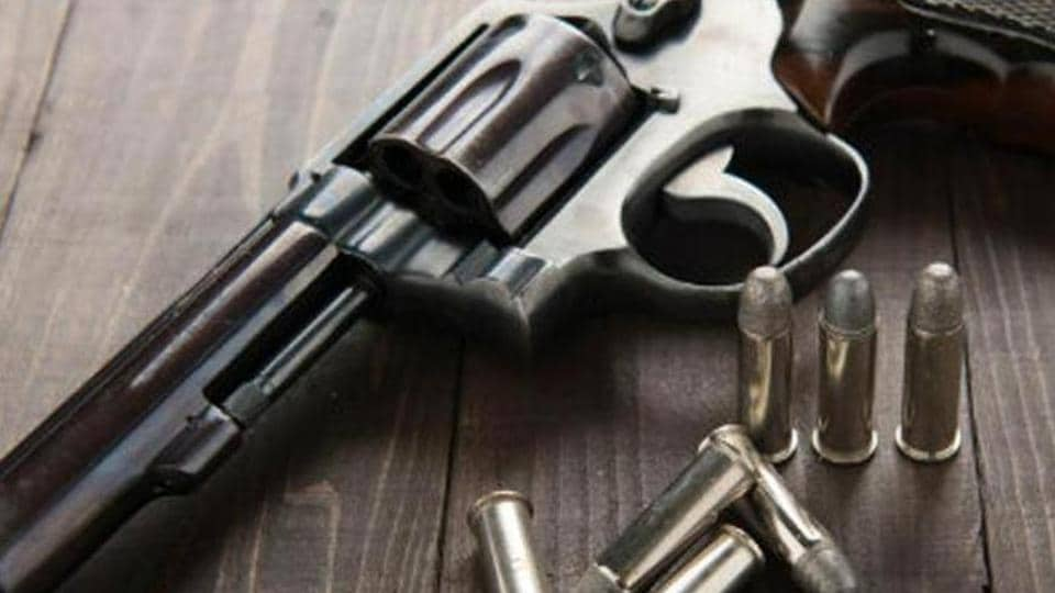 Narendra asked Babita to bring him his countrymade pistol and then allegedly opened fire at the brothers.
