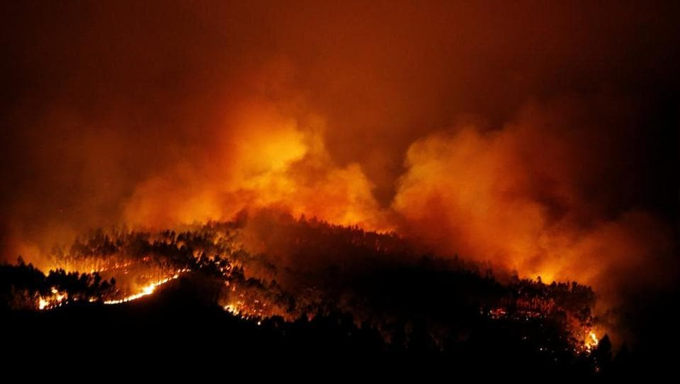 The forest fire near Tojeira in Pedrogao Grande in central Portugal