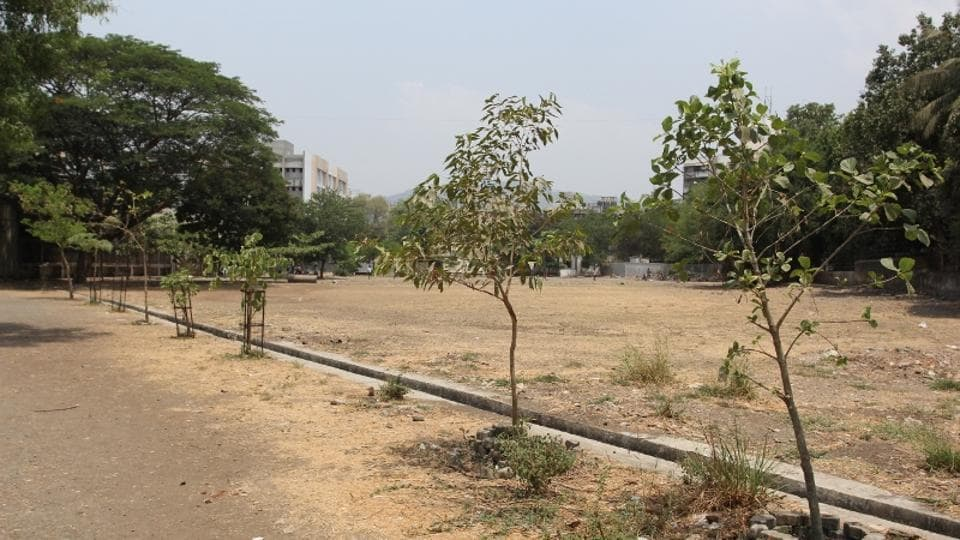 ITIs have been asked to plant trees on every barren patch on their campuses.