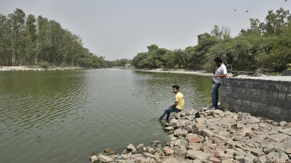 Sanjay Jheel in Mayur Vihar has been partially revived by the authorities. It has now become a favourite hangout for the local residents. It also attracts several birds and aquatic animals.