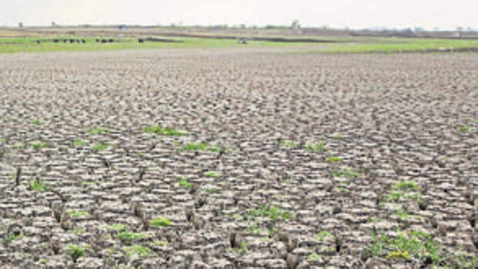 farmer suicide,Uttar Pradesh,Bulandshahr
