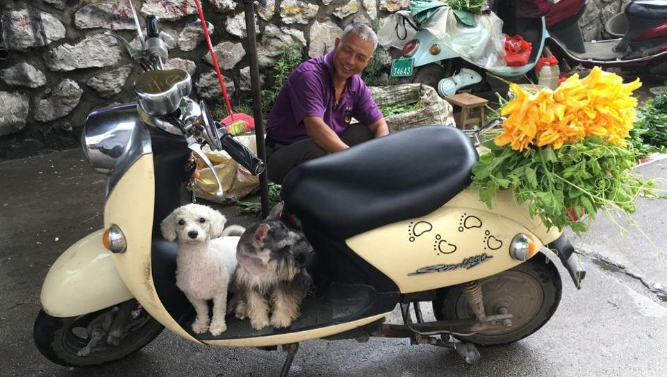 A man sits behind his pet dogs near a restaurant which serves dog meat in Yulin, in China's southern Guangxi region. The dog meat festival opened in Yulin on June 21 with butchers hacking slabs of canines and cooks frying the flesh after rumours that authorities would impose a ban this year. According  to animal rights groups vendors and officials reached a compromise and set a limit of two dogs displayed per stall. The market also features poultry, tanks of fish and vegetables and fruit, including big bundles of lychees.  (AFP)