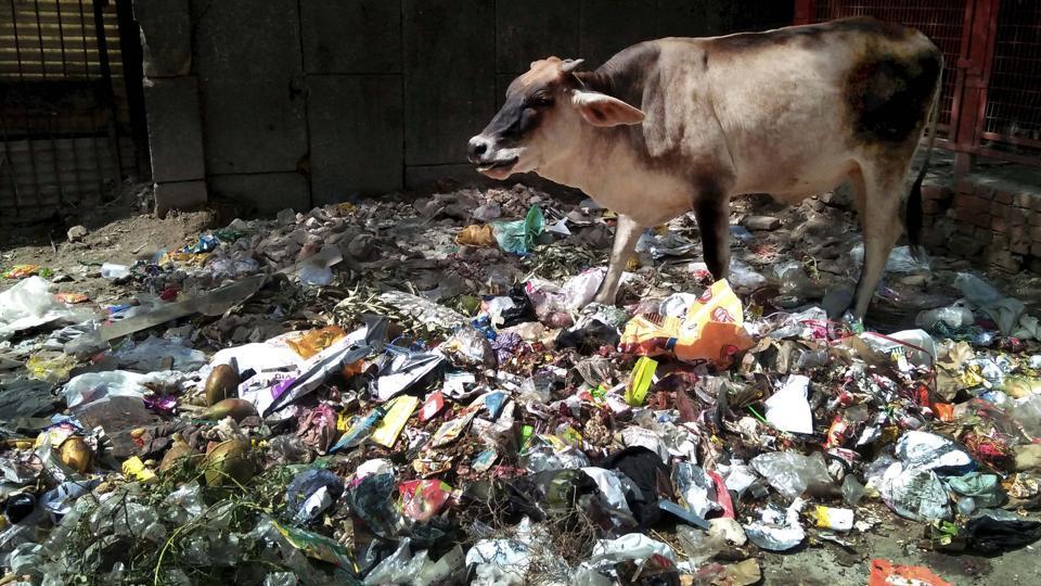 cleanliness,swachch bharat abhiyan,municipal corporations