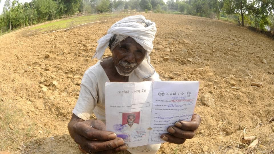 For farmers such as Hori Lal, from the Bandi ka Purva village in Barabanki, farming has become a lose-lose venture.