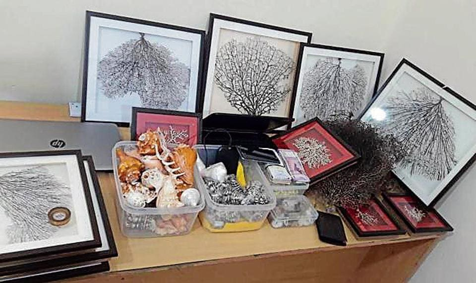 A former customs officer turned occult practitioner was arrested from Noida in the wee hours of Thursday on charges of trying to sell dried genitals of monitor lizards as 'Hatha Jodi'.