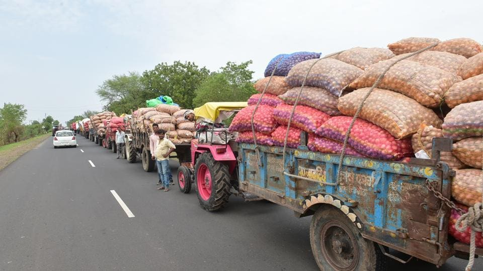 Tractor trolleys loaded with onion lined up outside a mandi on Bhopal- Indore highway in Madhya Pradesh.