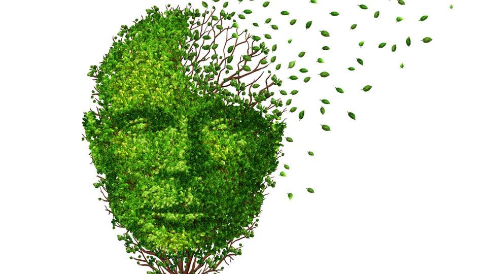 Researchers saw overall increases in brain wave frequencies that had been abnormally low in Alzheimer's disease patients.