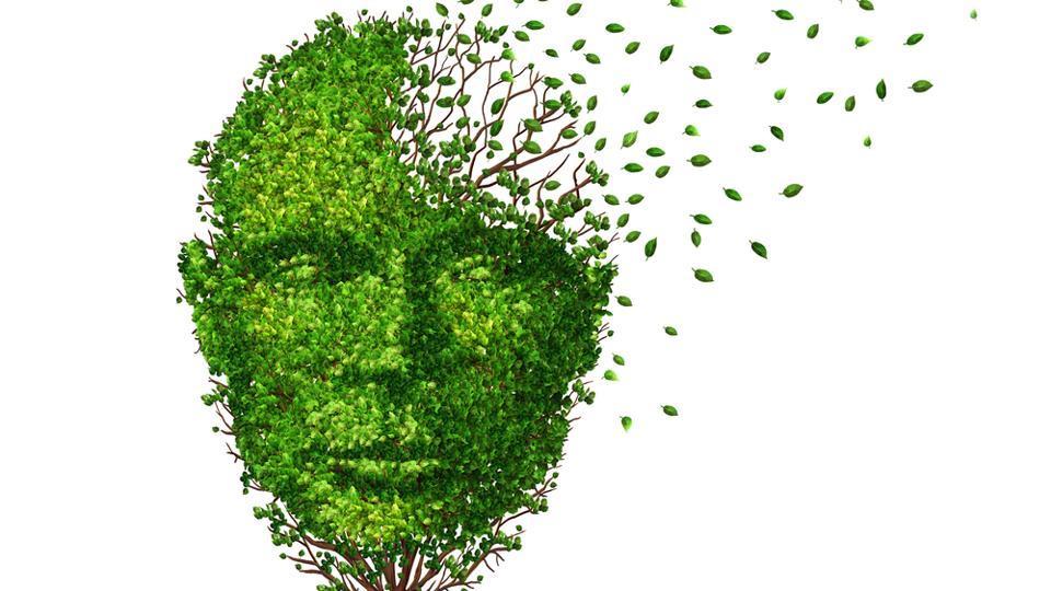 Alzheimer's,Alzheimer's Cure,Alzheimer's Study