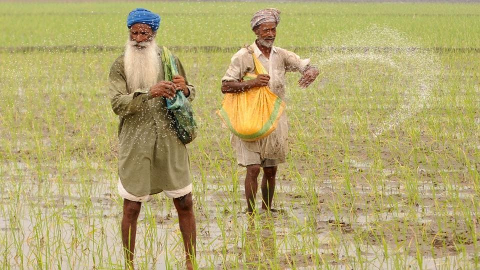 The Capt Amarinder Singh government has opened a Pandora's box on debt waiver, with the farmers and labourers who have been left out already up in arms.