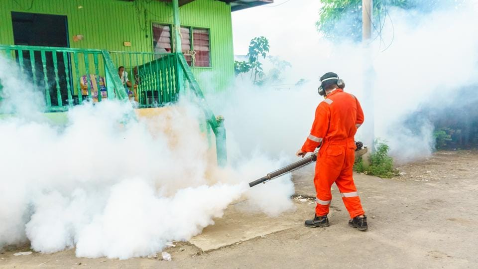 The findings, published in the journal Environmental Toxicology and Chemistry, highlight the importance of further studies to evaluate the actual risks of human exposure to pyrethroids when present in dust.