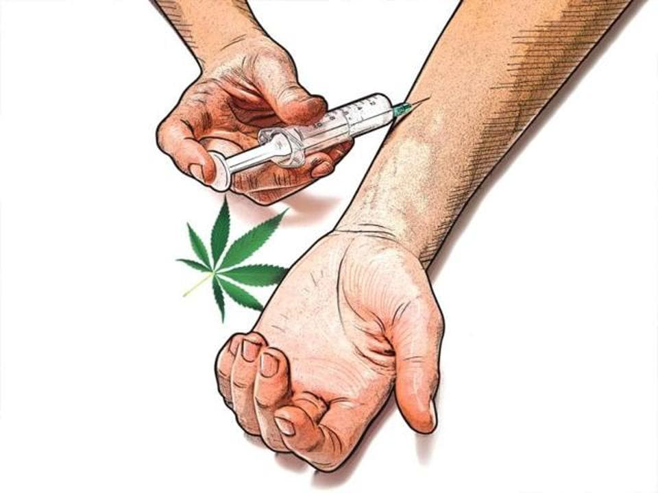 Drugs,Cannabis,Drug abuse
