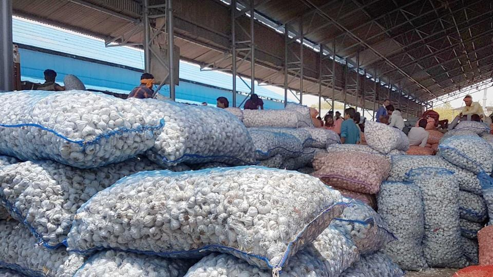 The farmer, Murlidhar Meena, was reportedly unable to sell  his garlic crop at the desired price.