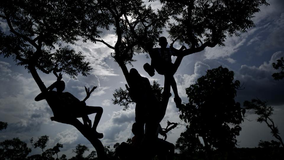 Boys sit on the branches of a tree to get a view of a match. (Ben Curtis / AP)