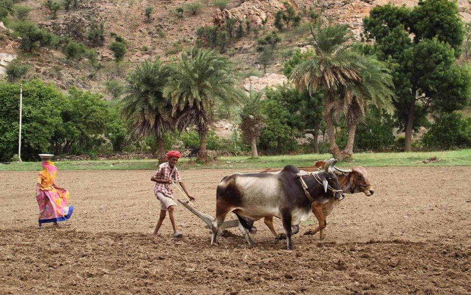 Farmers getting their fields ready for sowing crops on the onset of monsoon.