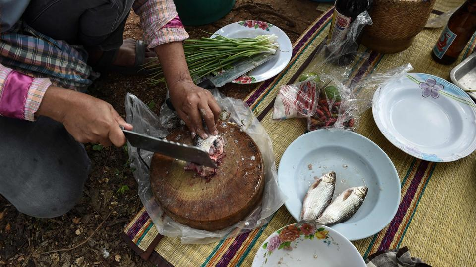 A farmer chops fresh fish for lunch in the northeastern Thai province of Khon Kaen. Millions of Thais across the rural northeast regularly eat koi pla -- a dish made of raw fish ground with spices and lime. The pungent meal is quick, cheap and tasty but it is also a favourite feast for parasites that cause a lethal liver cancer killing up to 20,000 Thais annually.