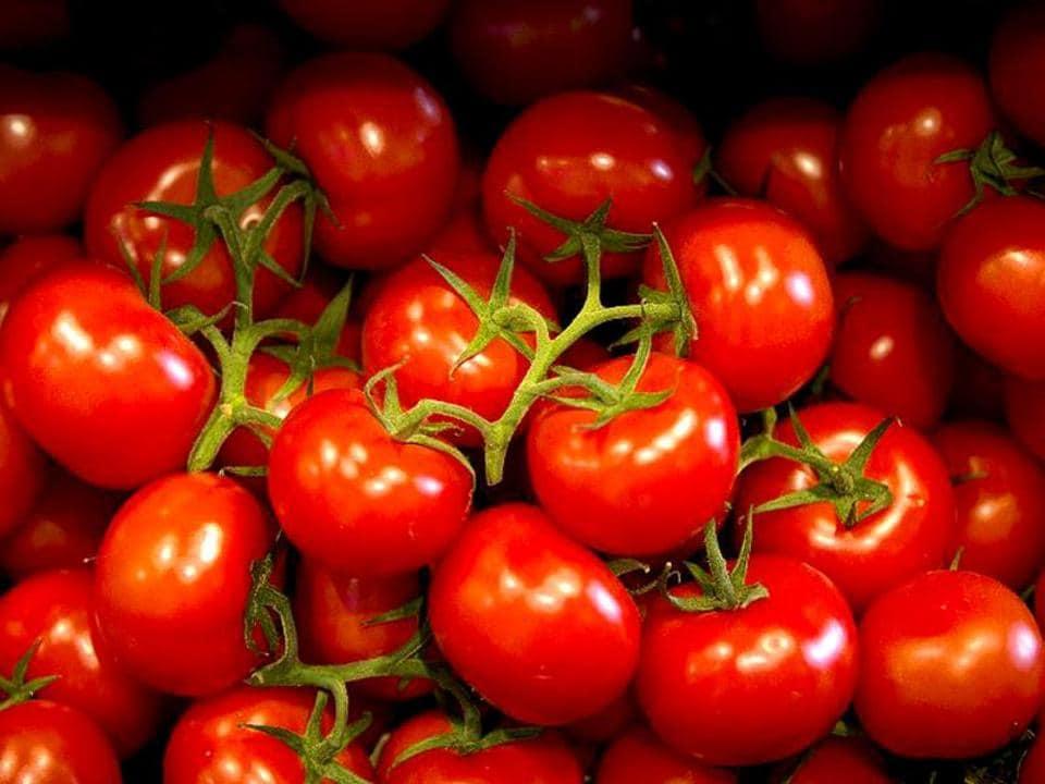tomato,tomato prices,vegetable price