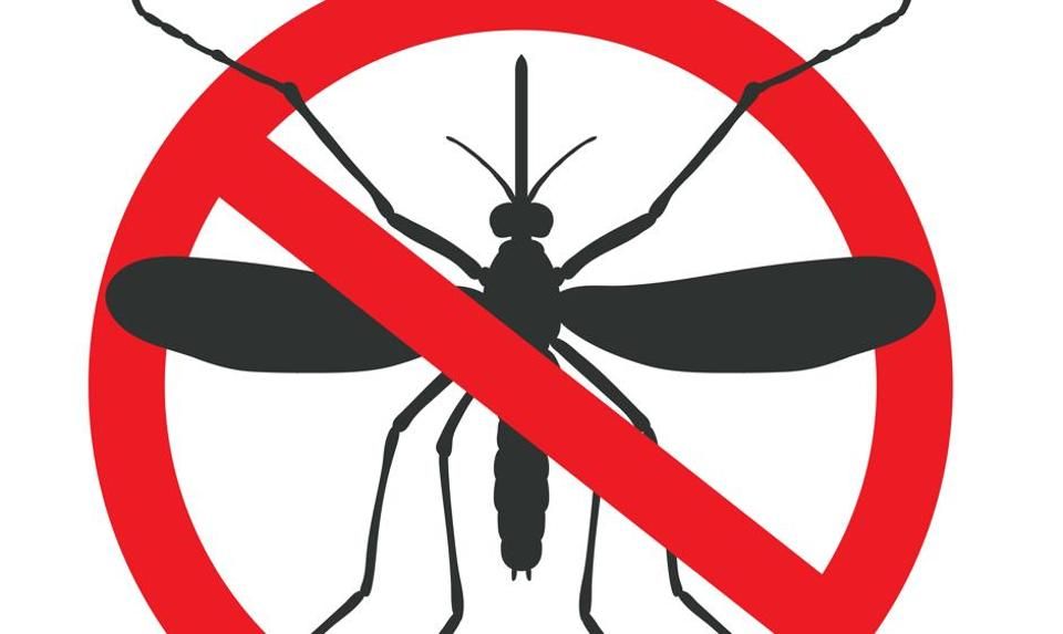 The new device in making will be able to detect multiple mosquito-borne infections in 30 minutes