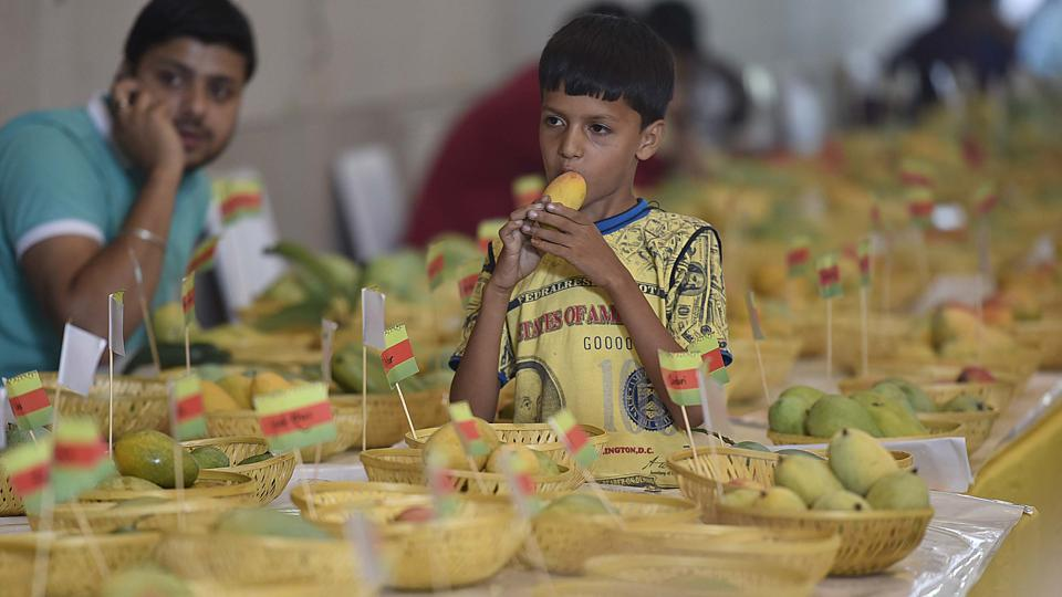 First organised  in 1988, this annual fest celebrates the magnificence of the king of fruits.  (Raj K Raj/HT PHOTO)