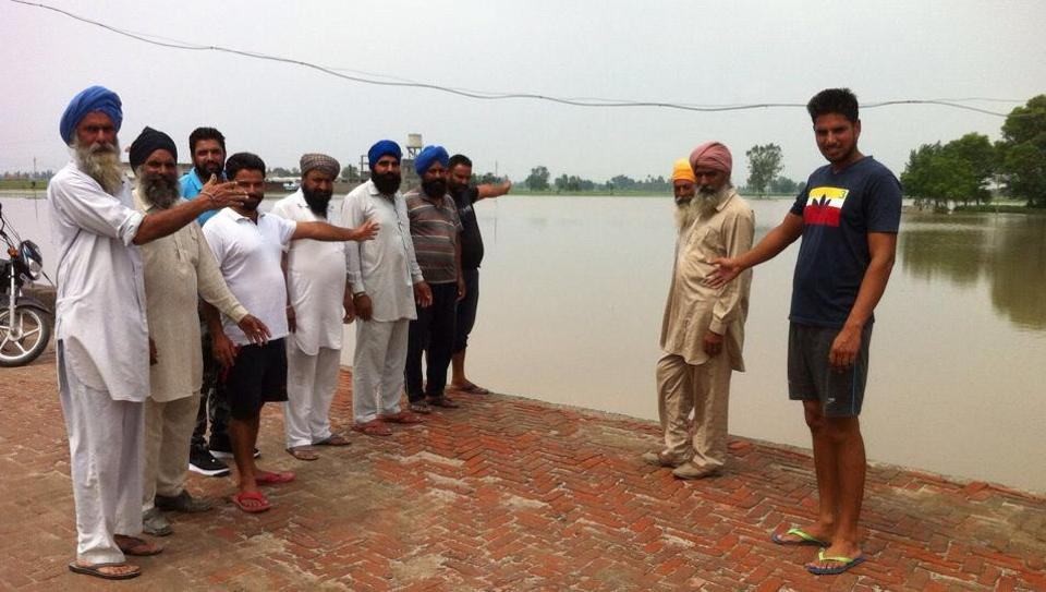 Farmers showing a submerged field in Sultanpur Lodhi on Saturday.