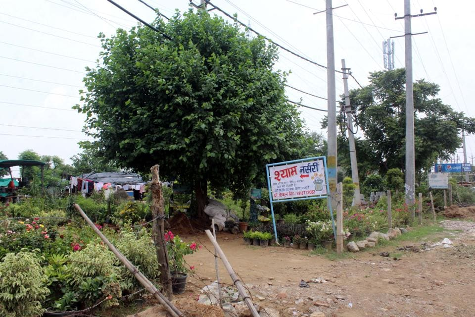 Government land off Golf Course Road has been encroached on by eateries, shops and nurseries.