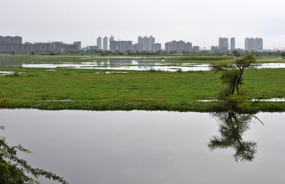 waterlogging,badshahpur drain,hero honda chowk