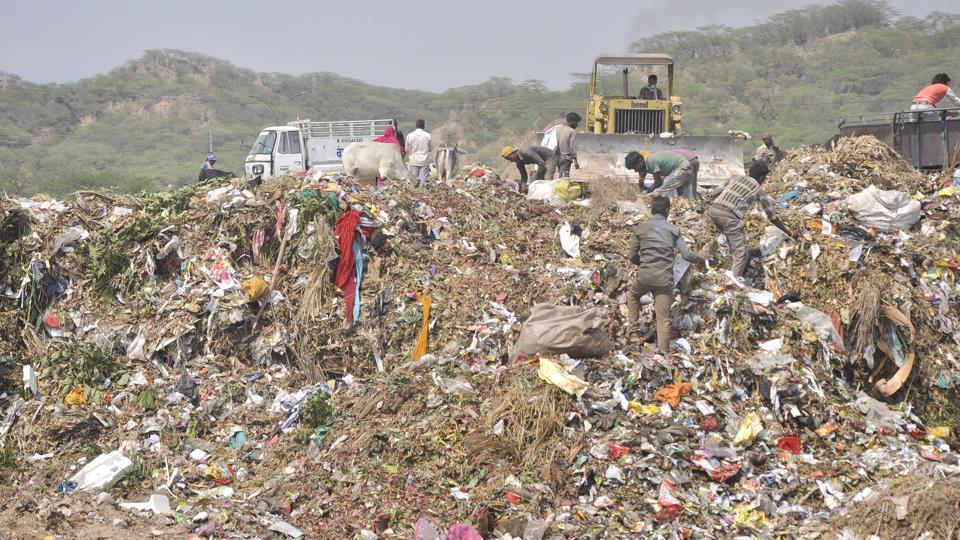 Dumping ground at Sector 23 Panchkula