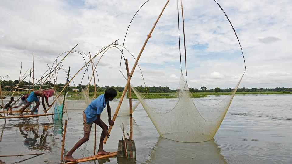 Men pull their fishing nets out from a flooded paddy field after heavy rains in Morigaon district . (Anuwar Hazarika / Reuters)