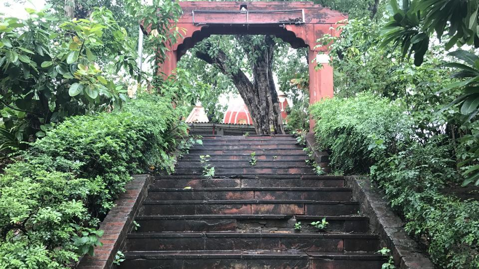 The temple is reached through a flight of picturesque stairs: almost every step has creepers and grass growing on it.