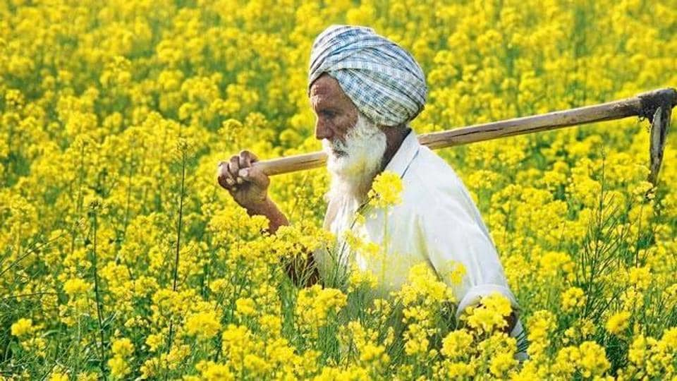 """Punjab lacks the fiscal space to accommodate the full funding of the loan waiver in 2017-18, with its fiscal deficit budgeted at a high 5% of gross state domestic product (GSDP), well above the anchor of 3%,"" the ratings agency said."