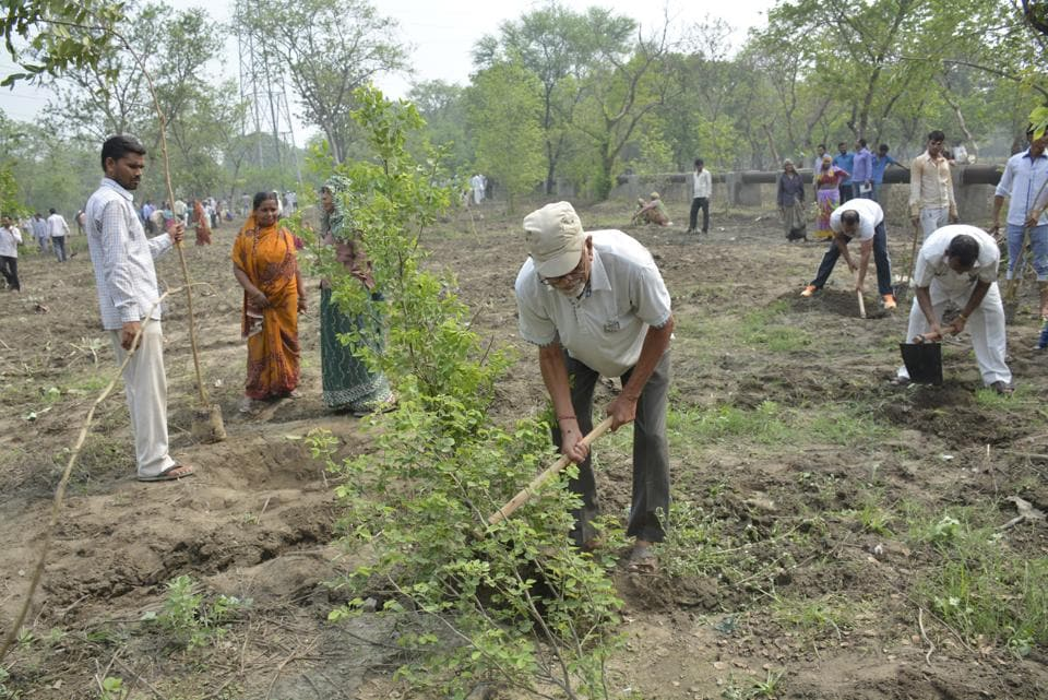 The Ghaziabad district has been given yet another target of planting of nearly 4 lakh trees this monsoon season.