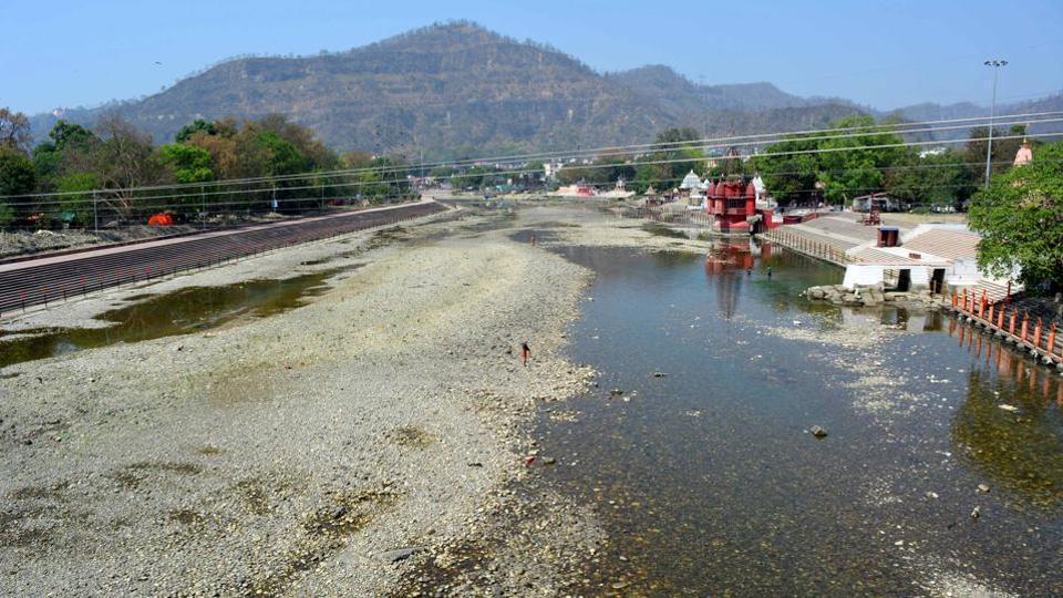 Ganga,pollution,fish mortality
