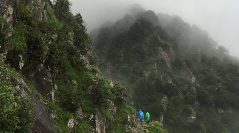 The trek to Triund appears to have inspired Pandora in James Cameron's Avatar.
