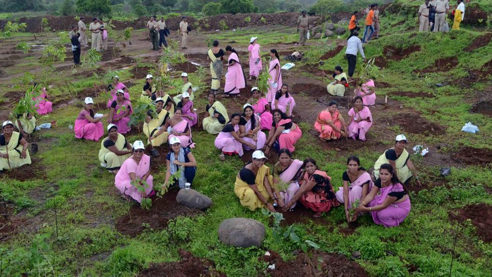 1 lakh tree plantation at village Mangrool, near Nevali, Ambernath in Kalyan. (Rishikesh Choudhary / HT Photo)