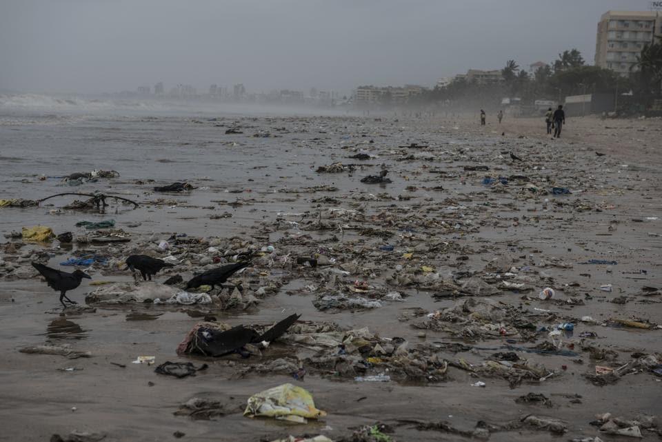 Mumbai beaches,Dirty beaches,Beaches of mumbai