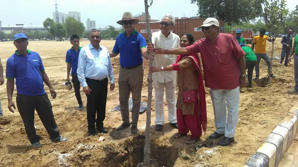 Pilkhan trees,Leisure Valley Park,Gurgaon news