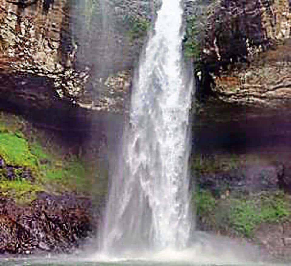 The waterfall is a famous trekking spot located near Tamini Ghat in Raigad district, 66km from Pune.