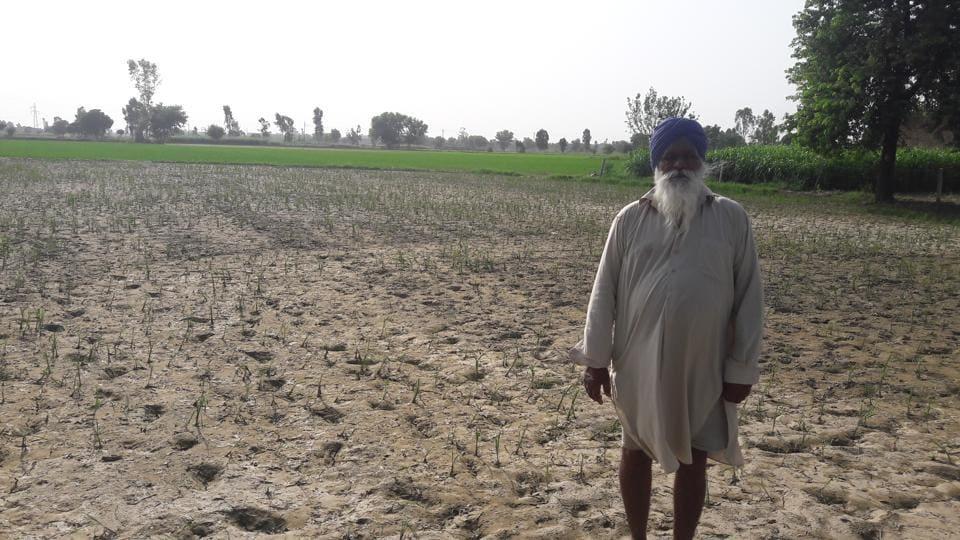 Mansa,suicide,agriculture