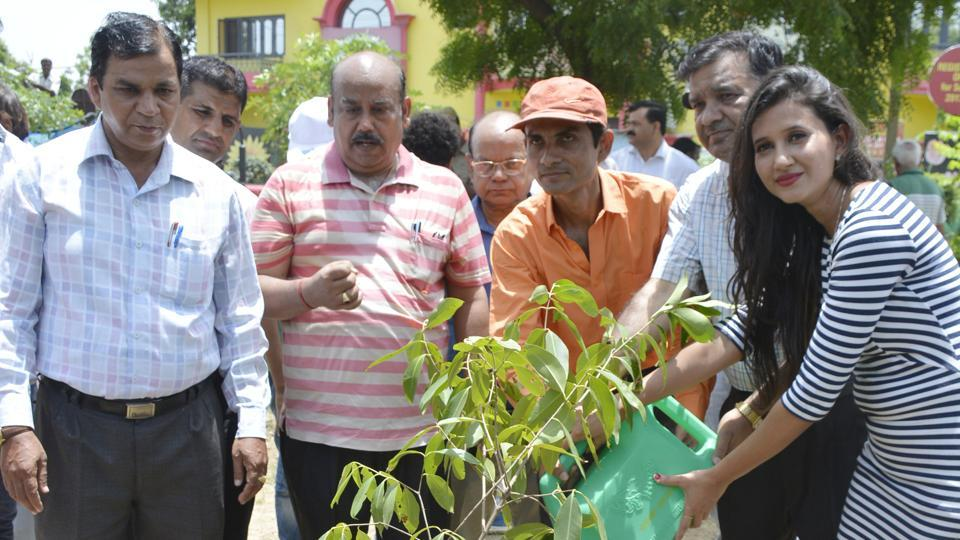 Residents participate in a plantation drive launched by Ghaziabad Development Authority on Sunday.