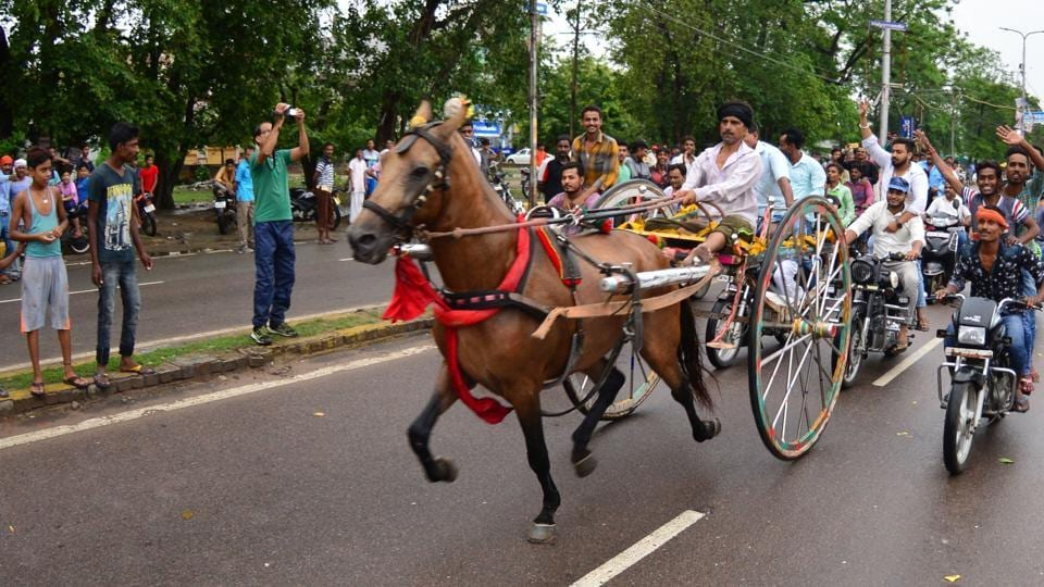 People take part in horse cart racing in Allahabad.
