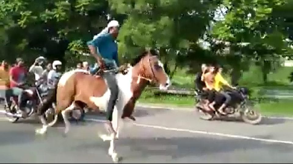 In the video that went viral on social media on July 9, two stallions ridden by the men were seen racing against each other on the main carriageway of the Noida-Greater Noida Expressway.