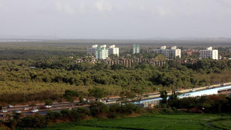Mumbai city news,Vikhroli mangroves,green cover