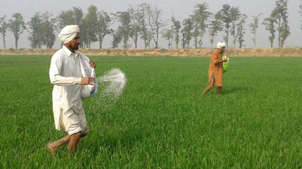 Many farmers who do not want to wait any longer are spending on alternative means of irrigation to plant paddy.