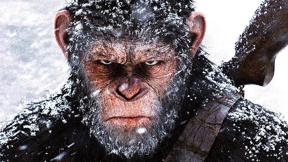 Apes,Humans,Battle