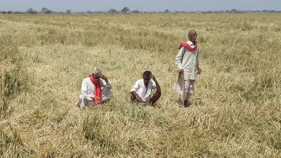 Chief minister Trivendra Singh Rawat has ordered a magisterial probe. In a tweet, he claimed the government was trying best to resolve the issues of the farmers.