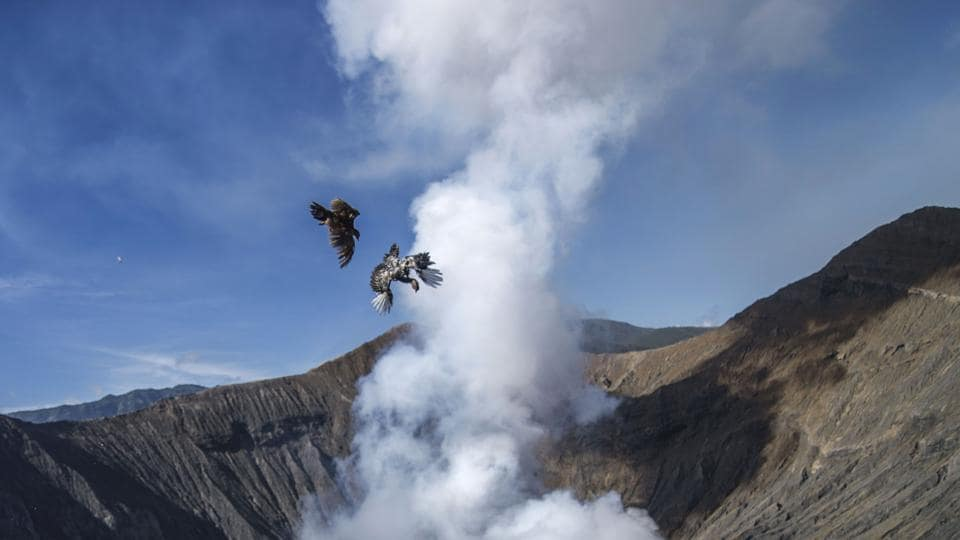 Two chickens are thrown into mount Bromo crater by members of the Tengger tribe, as offerings to Sang Hyang Widhi, during the Yadnya Kasada Festival in Probolinggo. During the annual Yadnya Kasada Festival, people present offerings of fruit, vegetables, livestock, flowers or rice by throwing them into the crater of Mount Bromo. (Juni Kriswanto / AFP)