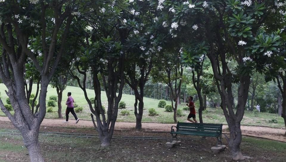 This bench in Nehru Park is one of the most serene spots in the city.