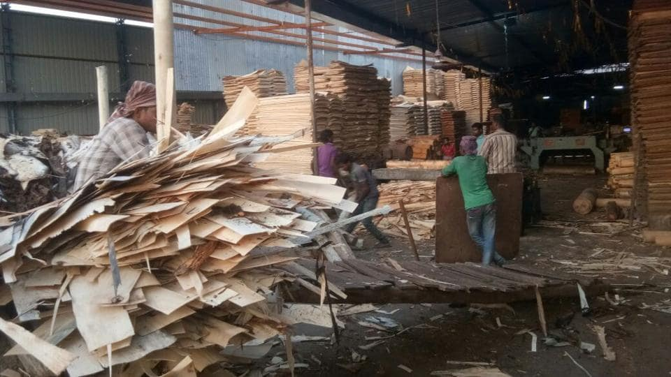 Workers at a plywood manufacturing unit in Yamunanagar on Thursday.