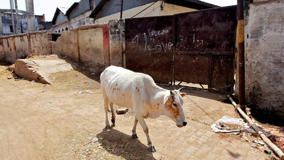 A closed slaughter house in Allahabad in Uttar Pradesh.