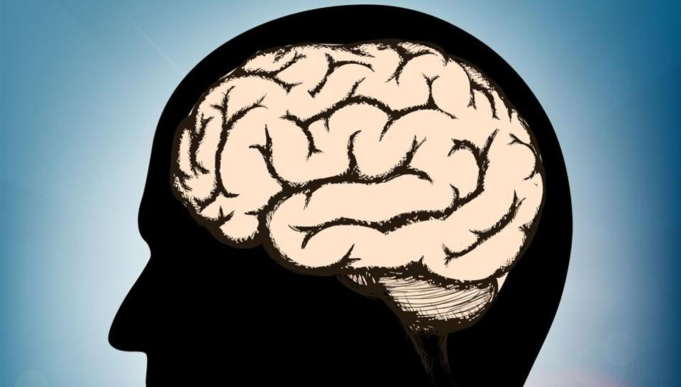The discovery could help in treating or preventing various brain diseases.